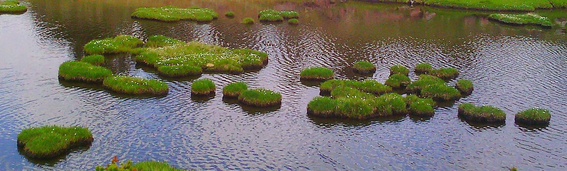 lac des bouillouses - juillet 2014 056ter